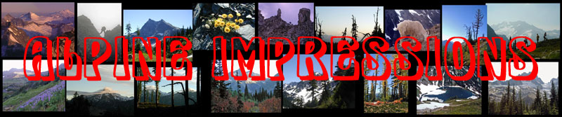 Website title 'Alpine Impressions logo with mountain pics